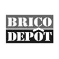 logo-bricodepot